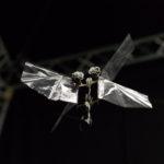 DelFly Nimble in hovering flight. Credits: Henri Werij, TU Delft.