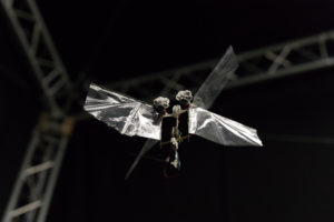 DelFly Nimble in hovering flight. Credits: Henri Werij, TU Delft.