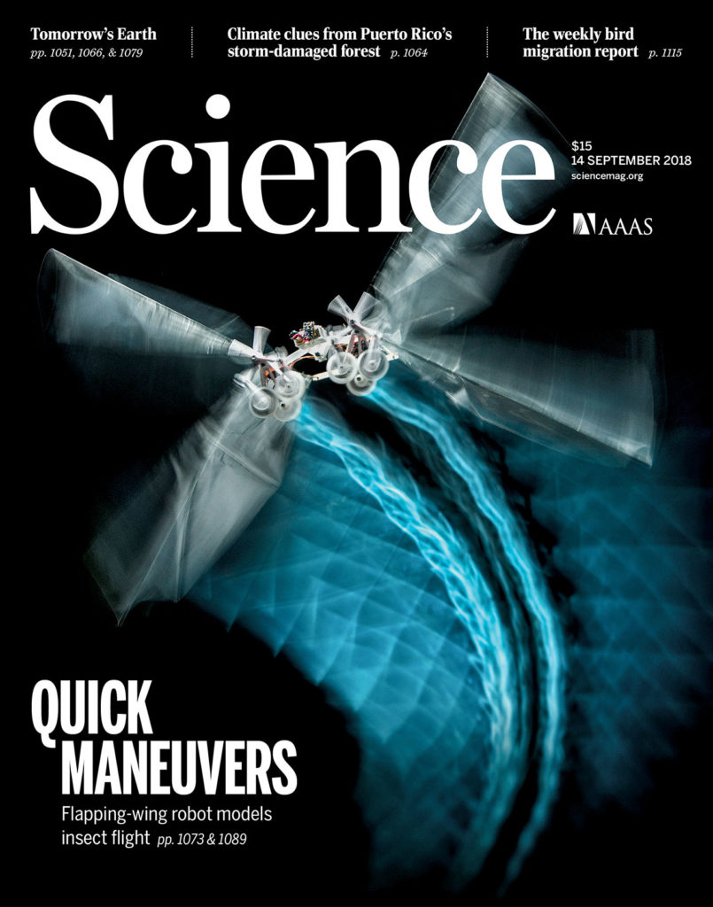 A tailless aerial robotic flapper reveals that flies use torque